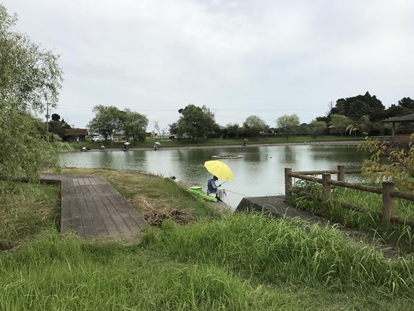 宮島池親水公園